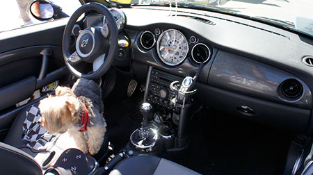 MINI Cooper dashboard