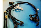 Vtec Wiring Harness Conversion For B Or D Series Honda