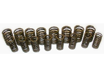 Cylinder Head Valve Springs 240lbs Anti Bind 570 Lift