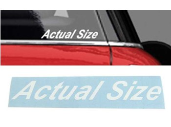Actual Size Graphic White Upper & Lower Case - Mini Cooper & S