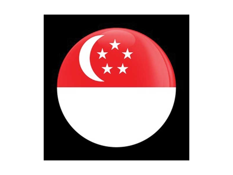 Dome Style 3 Inch Magnetic Badge - Flag Singapore