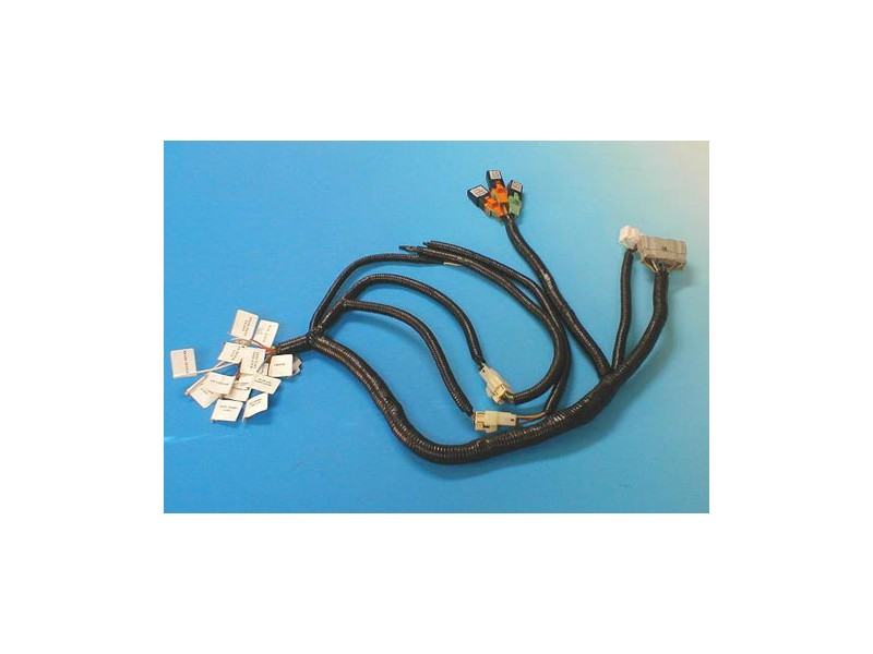 800600001mt51100 vtec k series wiring harness for mini conversion mini cooper engine wiring harness at bakdesigns.co